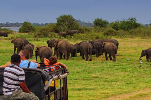 Explore Sri Lanka - Day 4 - Dambulla – Sigiriya - Dambulla