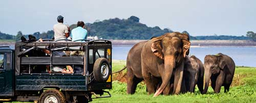 Gems of Sri Lanka - Tour Itineraries